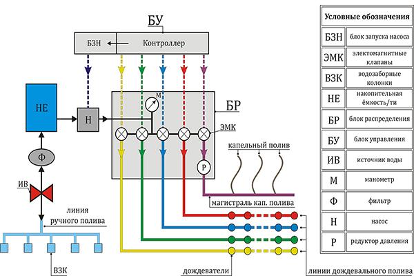 Стандартная схема устройства системы автоматического полива